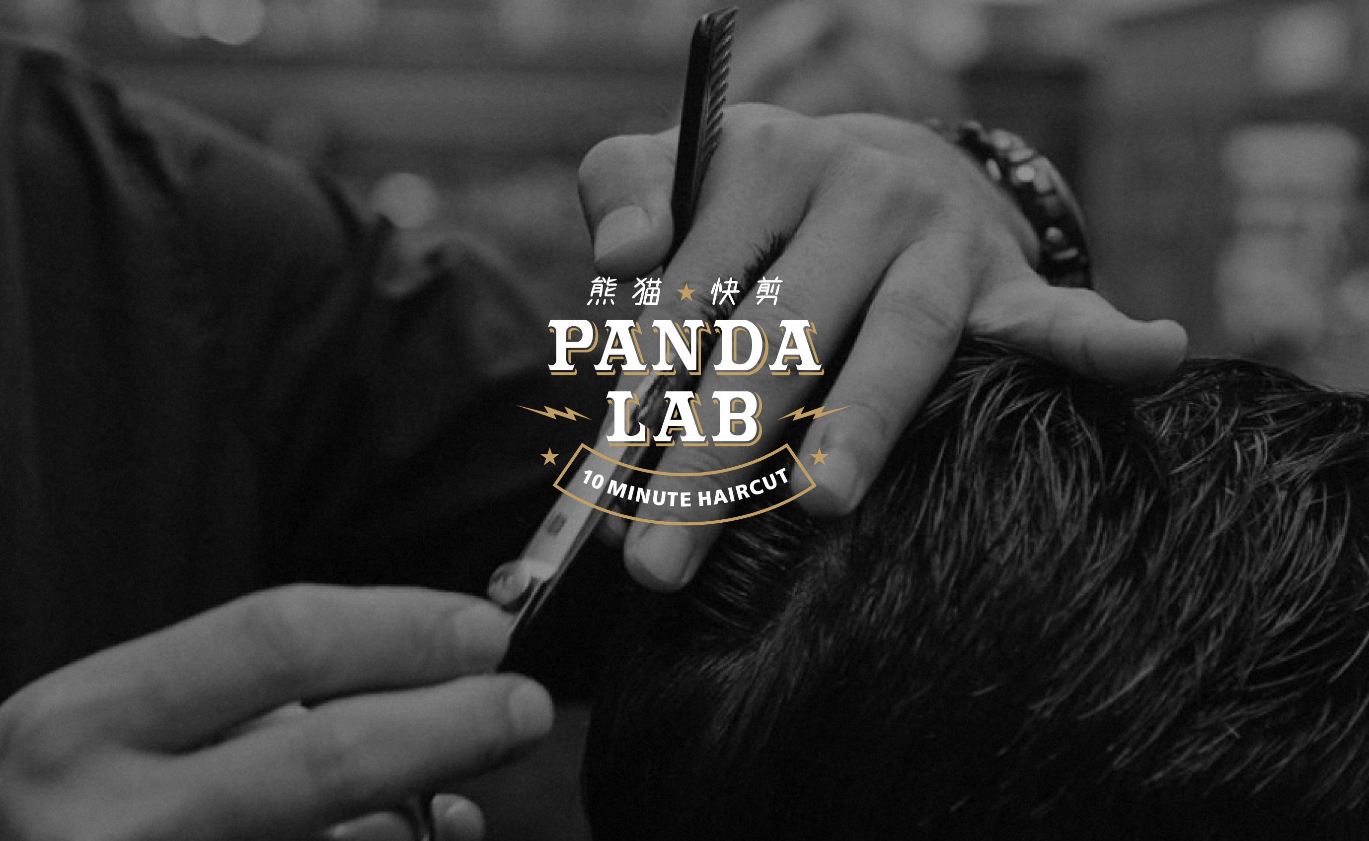 PandaLab Speed Hair Styling